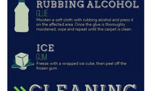 infographic describes How to remove any carpet stain