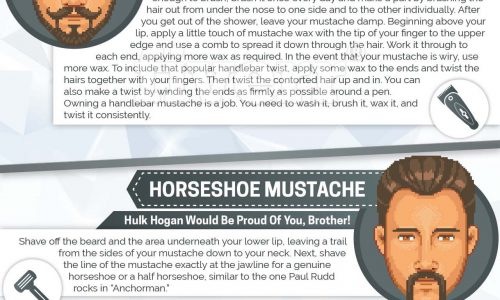 infographic describes How to grow and style your beard infographic