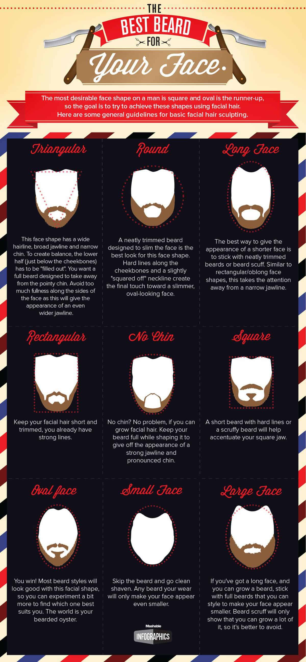 Astounding The Best Beard For Your Face Daily Infographic Schematic Wiring Diagrams Phreekkolirunnerswayorg