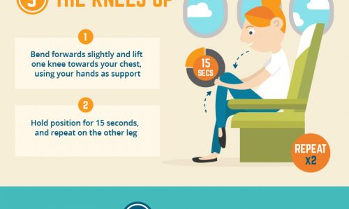 infographic describes how to stay healthy and comfortable on a long flight