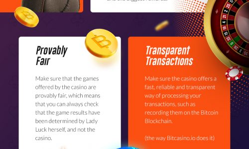infographic describes how to choose an online casino, whether bitcoin or cash