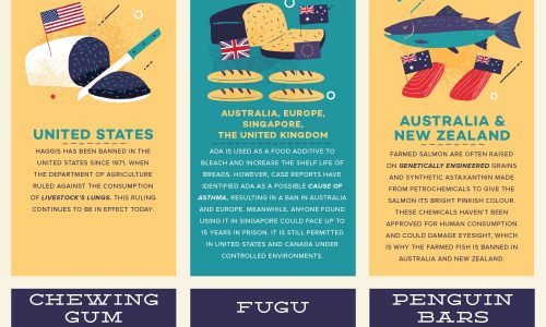 drawings of foods that are banned around the world for various reasons