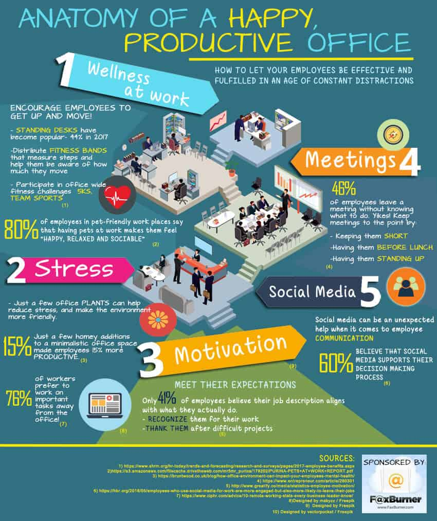 How To Create A Happy & Healthy Office Environment | Daily ...