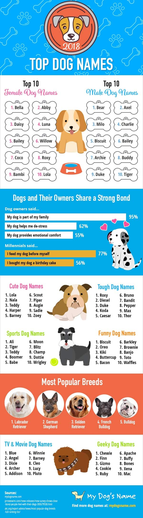 Farewell Fido Hello Trendy Dog Names Daily Infographic