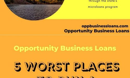 Opportunity Business Loans Infographic