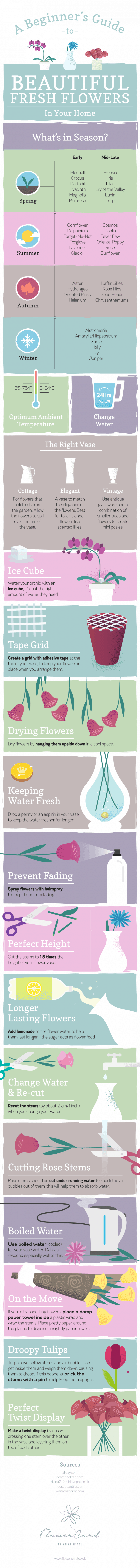 Tips on how to keep flowers in your home