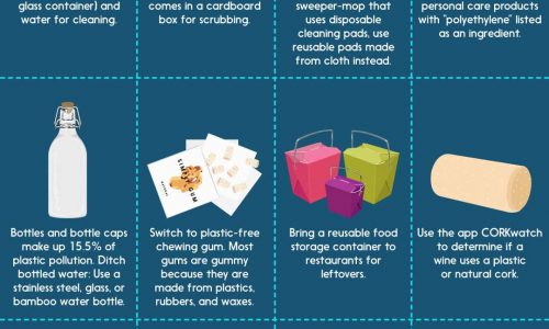 how to use less plastic in your daily life