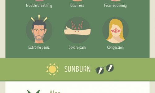 shows recipes for different kinds of ailments like bug bites and sunburn