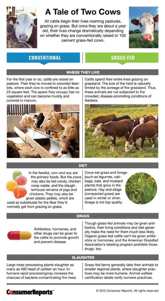 Choosing your beef
