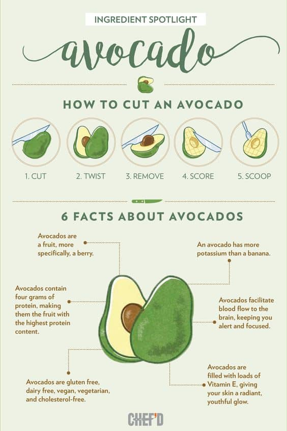 Avocado Fact Chart
