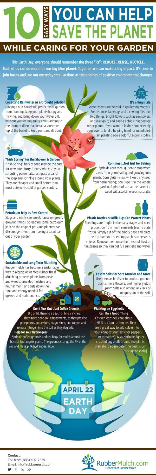 how to make your garden more environmentally friendly