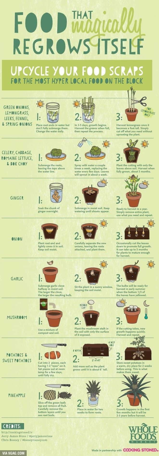 upcycle foods, chart that shows how to recycle foods
